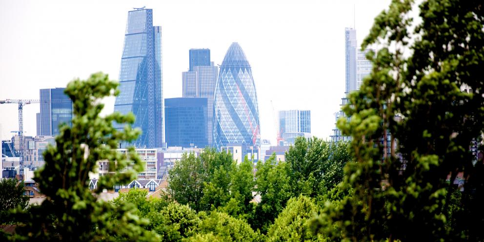 Natural Capital Investing in a Green Infrastructure for a Future London