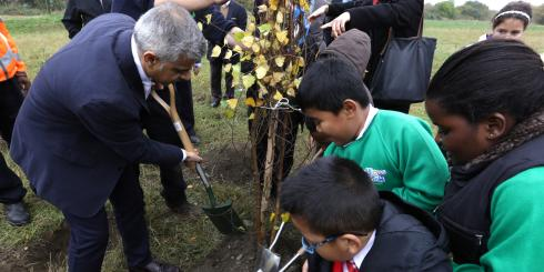 Tree Planting Mayor 1x1