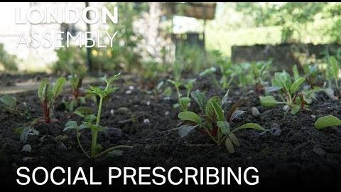 Social prescribing – the new 'pill' for London patients