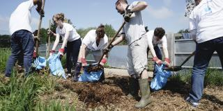 Corporate volunteering for groups of 10 or more at Kentish Town City Farm image