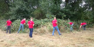Corporate Team Volunteering image