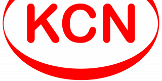 Kingston Carers' Network Logo