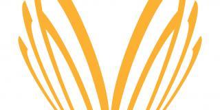Volunteer Centre Camden logo