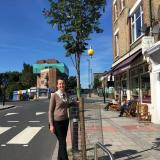 A beautiful new street tree in Lewisham courtesy of STfL and Lewisham Council